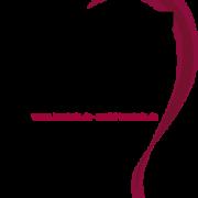 Logo-BVZ2016-Zweithaarspez-07042019transparent-246x300