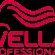 wella-professionals-300x189